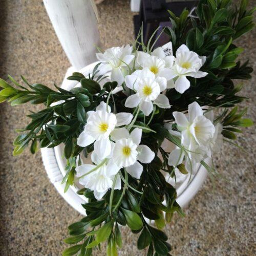 Narcisser hvide blomster i vase