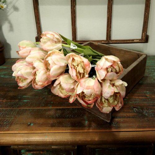 tulipaner rosa med fine blade