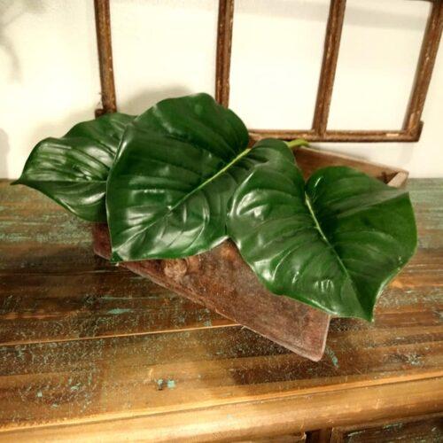 Grønne blade til buketter