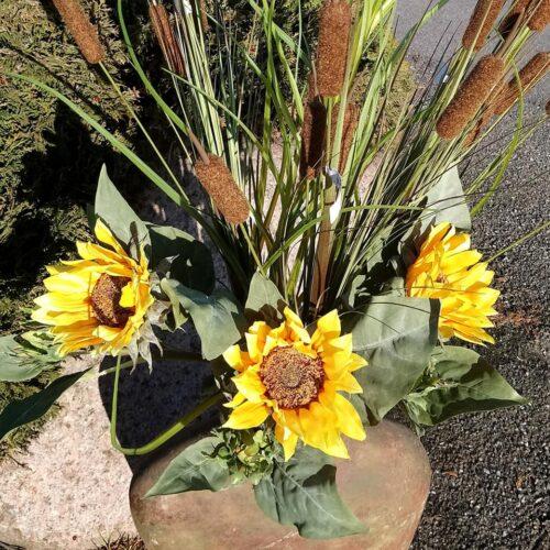 Solsikker 2-grenede 70 cm