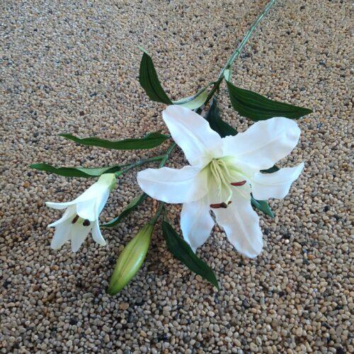 Liljer hvide naturtro