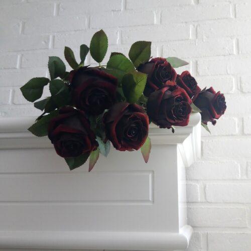 Vinrøde langstilkede roser