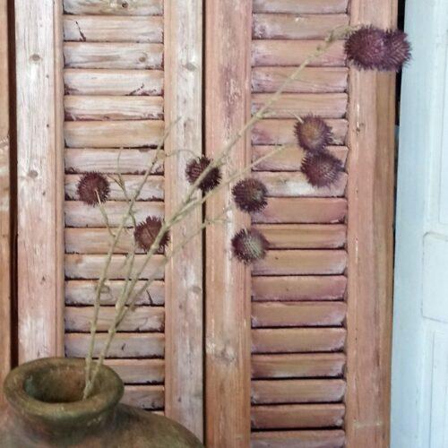 Tidsel gren lilla 95 cm høj