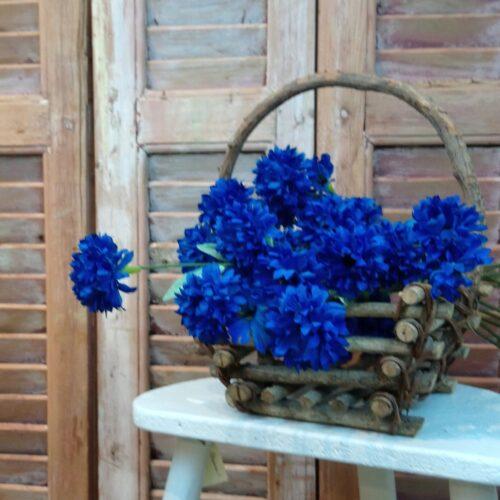 Blå kornblomst 3-grenet