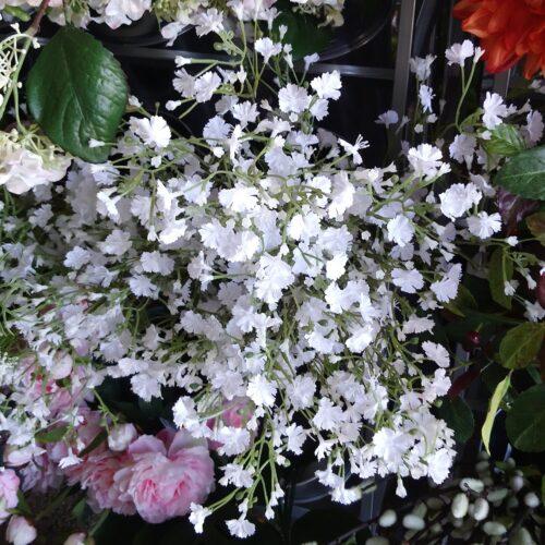 Brudeslør hvide blomstergrene