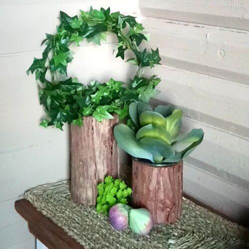 Planteglas / glasvaser