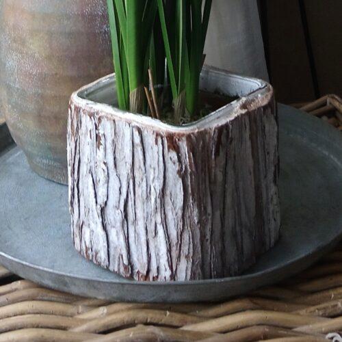 Planteglas/glaspotte med kork