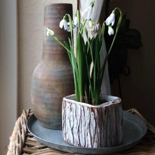 Planteglas / glaspotte med kork