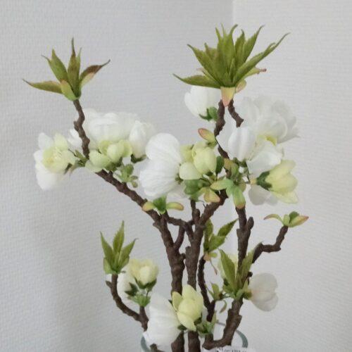 Æblegrene med mange blomster