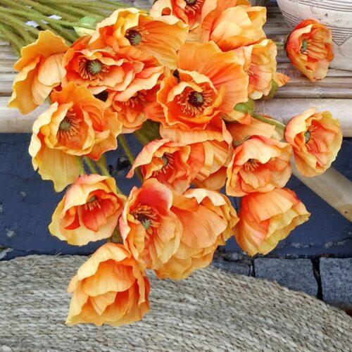 Orange Valmuer 3-grenede