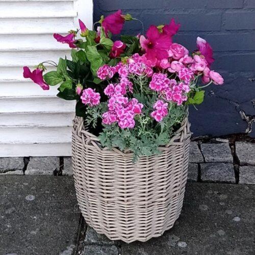 Plantekurv med smukke rosa blomster