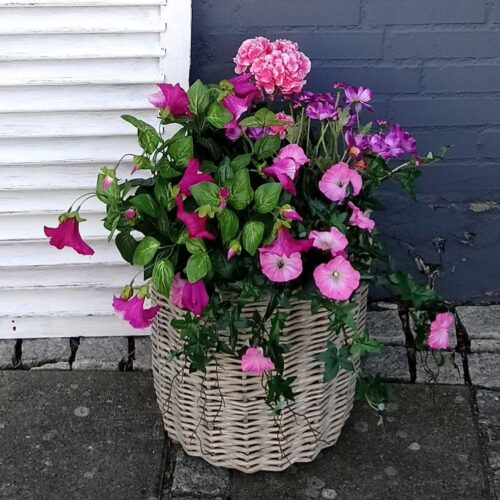 Plantekurv med smukke blomster