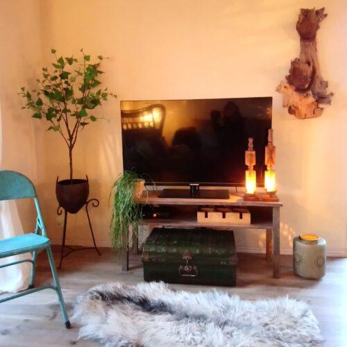 TV. bord rustikt