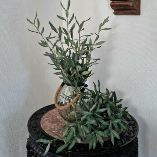 Olivengren - flot stor og fyldig